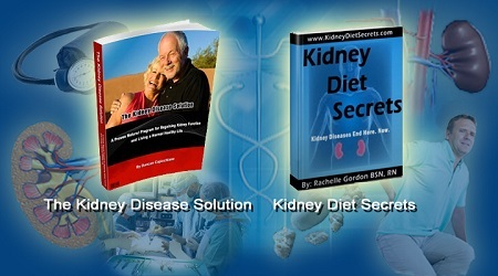 Kidney Disease Solution Ebook