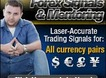 Vladimir's Forex Signals Review: The Secrets to Forex Trading